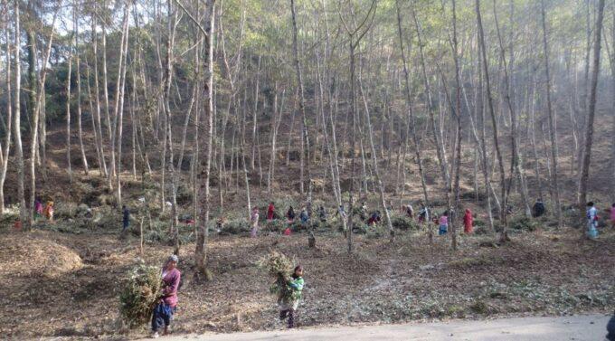 Bild aus Nepal